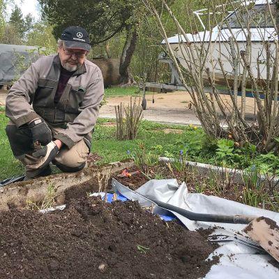 Mies hoitaa puutarhaa.
