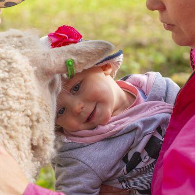 Lammas ja lapsia