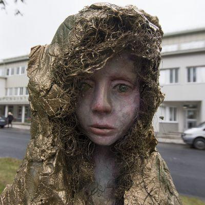 Pohjolankadun taidenäyttely.
