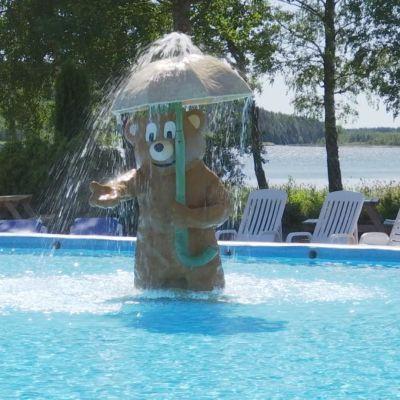 Puuhamaan nallekarhu uima-altaassa