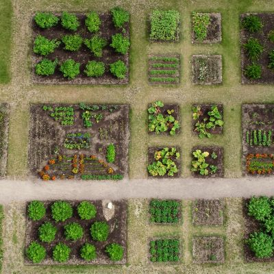 Ilmakuva Kotkaniemen puutarhasta