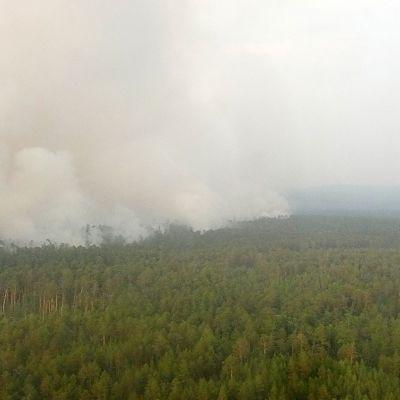 Ilmakuva palavasta metsästä Siperiassa