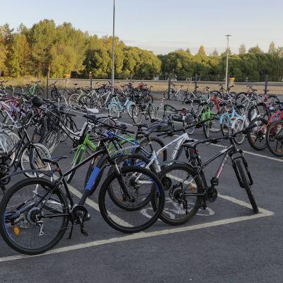 Putaan koulun pyöräparkki on täynnä pyöriä kävele tai pyöräile teemapäivän ansiosta.