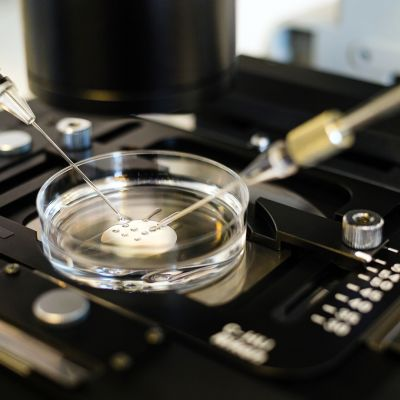 Mikrohedelmöitysmenetelmällä tehtävä keinohedelmöitys mikroskoopin alla.
