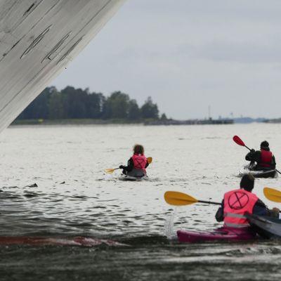 Elokapina-aktivistit yrittävät estää kajakeilla luksusristeilijä Queen Elizabethin lähdön Helsingin satamasta Hernesaaressa 25. syyskuuta.