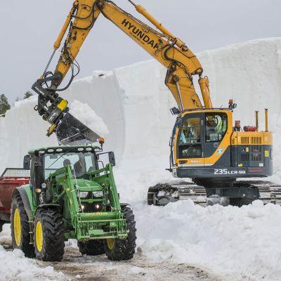 kaivinkone nostaa lunta traktorin peräkärryyn.