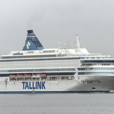 Tallink Silja Europa saapumassa Tallinnasta Helsingin Länsiterminaaliin sunnuntaina 20. lokakuuta. Viron poliisi löysi laivalta sunnuntaiaamuna Tallinnan satamassa kaksi kuollutta nuorta aikuista.