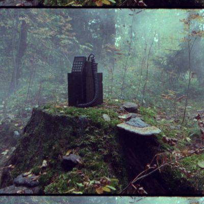 Vanhanaikainen, kannettava NMT-autopuhelin kannon nokassa sumuisessa metsässä