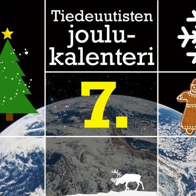 joulukalenteri kuvitus