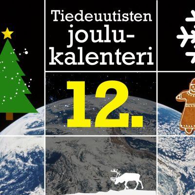 Tiedeuutisten joulukalenteri kuvituskuva