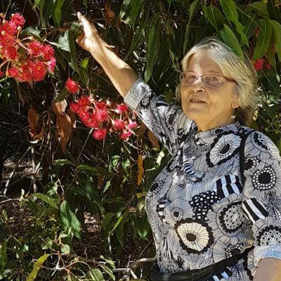 Sydneyssä asuva suomalainen Auli Kontkanen kuvattuna kukkivan eukalyptuspuun vieressä.