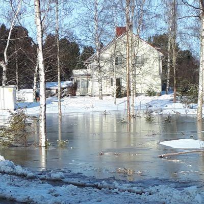 Vettä asuinalueen pihoilla