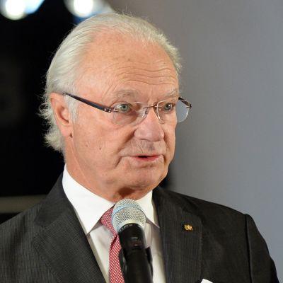 Ruotsin kuningas puhuu kansalaisilleen
