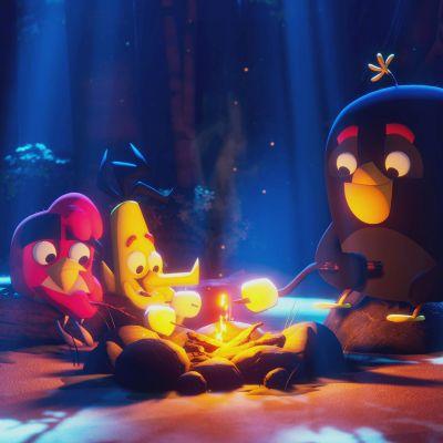 Angry Birds: Summer Madness sijoittuu kesäleirille.