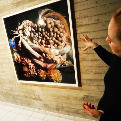 Yle Tampereen museokierros: Sara Hildénin taidemuseon Still Still Life -näyttely