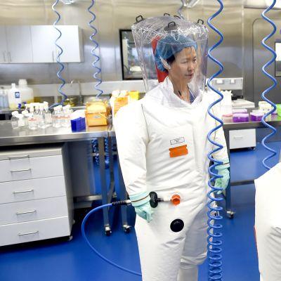 Wuhanin virologianlaitoksen laboratorio.