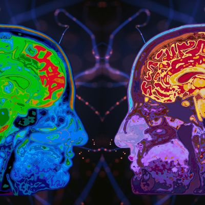 Kerroskuva kahden henkilön aivoista