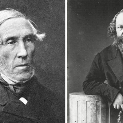 J. V. Snellman, Mikhail Bakunin