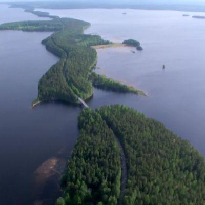 Vy över Pulkkilanharju ås i Päijänne nationalpark.