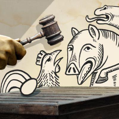 Kuvituskuva eläinten oikeudenkäynnistä.