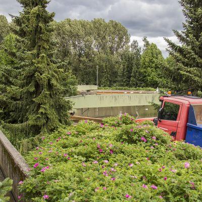 Viinikanlahden jätevedenpuhdistamon aluetta kesällä.