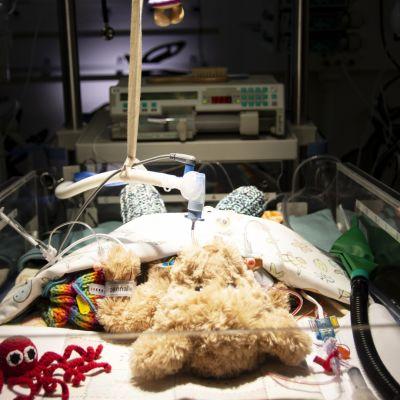 Syöpää sairastavien lasten eriarvoisuus – miten perheiden tulotaso vaikuttaa?