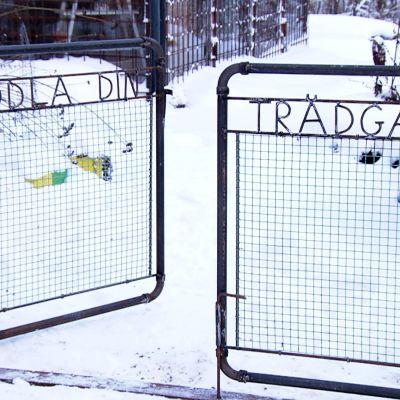 Strömsön puutarhaportti.