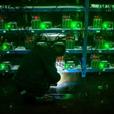 Vihreänä hohtavia tietokoneita, edessä hahmo varjossa.