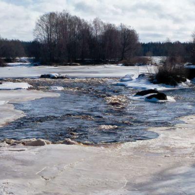 Kyrönjoki Kolkin sillan luona