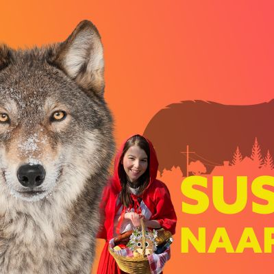 Vaeltavat SUDET – Miksi susi tulee PIHAAN?!