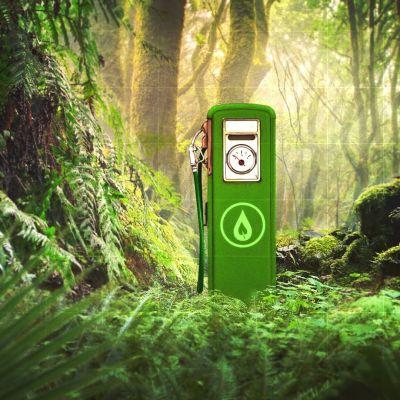 Biopolttoainetankki sademetsän siimeksessä.
