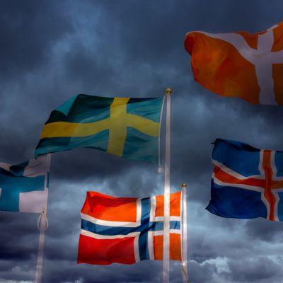 De nordiska flaggorna mot en hotfullt mörk himmel
