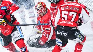 Jonathan Iilahti, Sport.