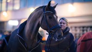 Hevonen ja sen hoitaja