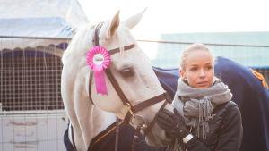 Valkoinen hevonen ruusuke päässään ja nainen