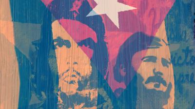 Haalistuva vallankumous