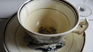 gammal kopp