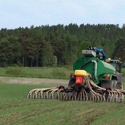 Virtsaa levitetään traktorin säiliöstä pellolle.