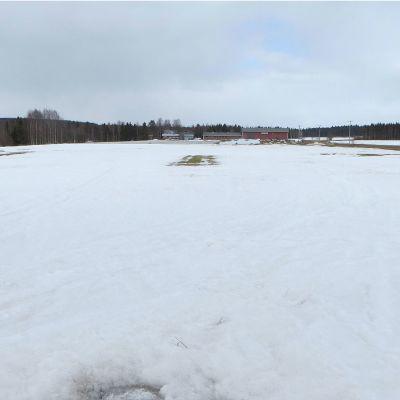 Lunta pellolla.