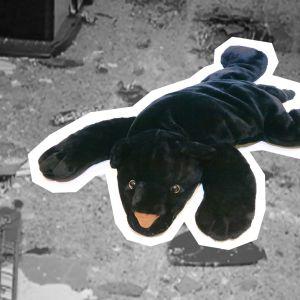 Pehmopantteri lisätty mustavalkoisen räjähdyspaikkakuvan päälle.