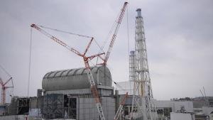 En lyftkran och stödkonstruktioner vid Fukushima.