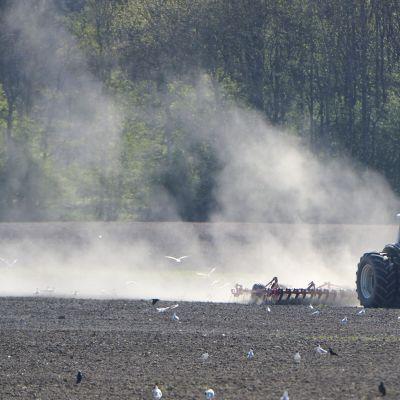 Traktori pellolla kevättöissä.
