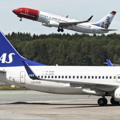 Norwegianin kone nousee Arlandan lentoasemalta, etualalla SAS:n koneita.
