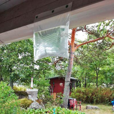 Riitta Piironen testasi Espanjasta oppimaansa niksiä ampiaisten häätöön. Yksinkertaisuudessaan muovipussiin laitetaan vettä ja koko komeus aurinkoon. Piirosen yllätykseksi niksi tuntui toimivan.