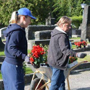 Emma Aalto och Christina Lindgren håller på och planterar blommor på Vasa gravgård.