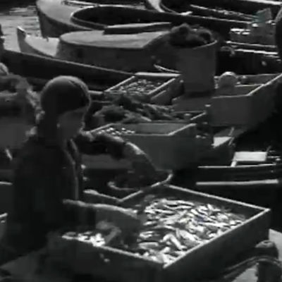 Helsingin silakkamarkkinoilla (1930-luku).