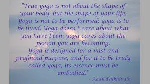 Citat av Aadil Palkhivala