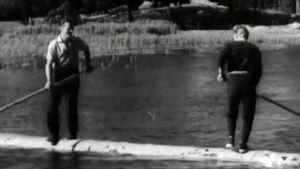 juhannusmenoja Seurasaaressa 50-luvulla. Miehet tasapainottelevat tukilla.