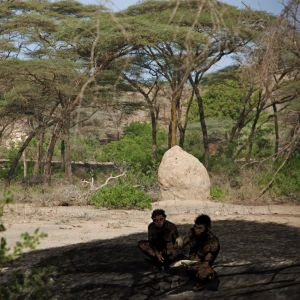 Homo erectus, Etiopien (This restoration is based on evidence from the Daka Member, Ethiopia. The photo in the background is from a gallery forest on the Kebena River, a tributary of the modern Awash River.)