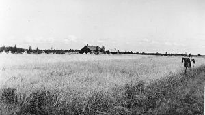 En åker i Narvusi, Ingermanland år 1938.